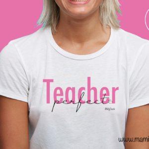 Perfect Teacher